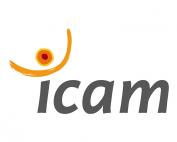 ref_icam